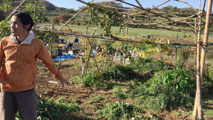 中井町へ遠足!トニーさんのポタジェガーデンと、たんじゅん農法の畑を見学