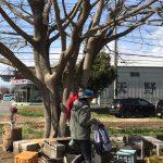 藤沢の「にこにこ農園」さんへ遠足!人と生き物を想う有機農業に触れる